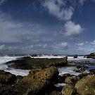 Boiler Bay Oregon Coast by Charles & Patricia   Harkins ~ Picture Oregon