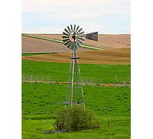 Sentential of the Plains Photographic Print
