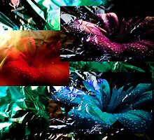 Collage Lilies. by Vitta