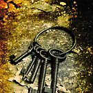 Keys by Sharonroseart