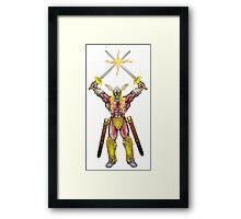 The Swordsman Framed Print