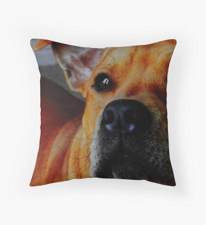 Staffordshire Bull Terrier. Throw Pillow