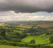 Vale of Afon by phil hemsley
