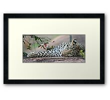 Recreation and relaxation! Framed Print