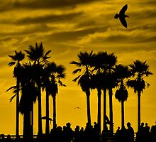 "...""boiling over bubbling up""....(Venice Beach sunset, California) by Russ Styles"