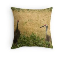 Pair of Sandhill Cranes Throw Pillow