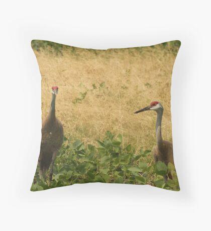 Pair of Sandhill Cranes Throw Pillow