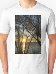 Golden Willow Sunrise T-Shirt