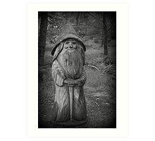 The Wizard Art Print