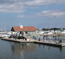 Racine Harbor by Monnie Ryan
