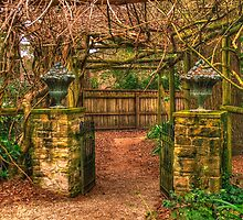 Secret Garden -  Mount Wilson, NSW Australia - The HDR Experience by Philip Johnson