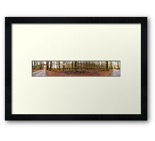 Exploring the enchanted woods [Gamla Åminne Naturreservat panorama] Framed Print