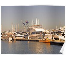 Dolphin Quay Boats Poster