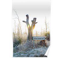 Gamla Åminne Naturreservat entry Poster