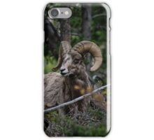 Big Horn iPhone Case/Skin