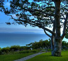 Rancho Palos Verdes Ocean View by Diana Graves Photography