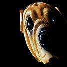 puppy eyes by NIKULETSH