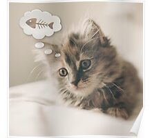 Dreaming Cat Poster