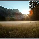 Yosemite Valley Sunrise by Tim Wright