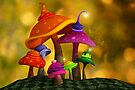 Whimsical Mushrooms by Liam Liberty