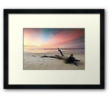 Fallen Tree Beach Framed Print