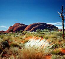 The Olgas (Kata Tjuta). Northern Territory, Australia. by Ralph de Zilva