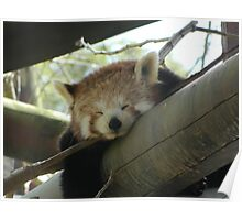 lazing around Poster