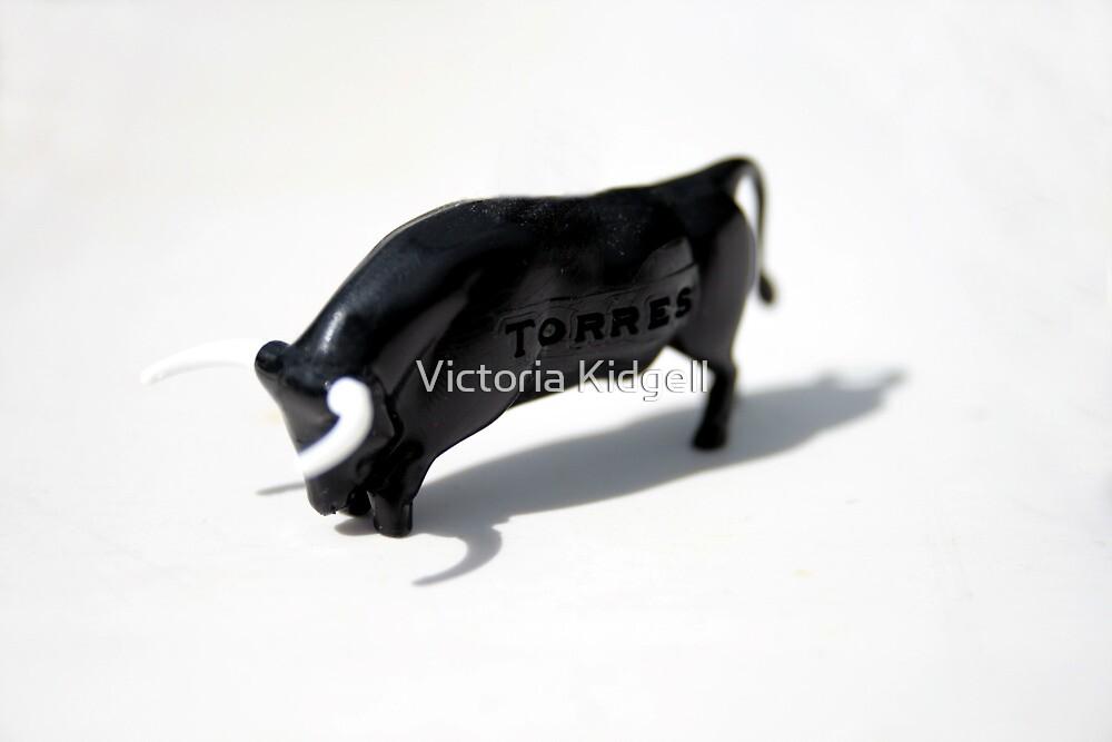 Torres by Victoria Kidgell