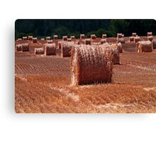 Straw army Canvas Print