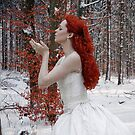 Touch of Lady Winter by artddicted