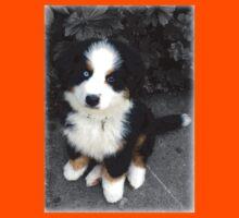 Cute Bernese Mountain Dog Puppy Kids Clothes