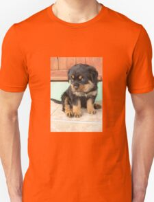 I Don't Need To Be Told I Am Cute ..... T-Shirt