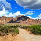 Superstition Mountains-5 by George Lenz