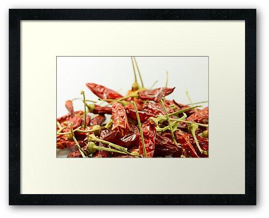 Dried chilli pepper by Proobjektyva
