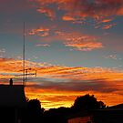 Suburban Sunrise by Mark Cooper