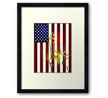 Flag of Liberty Framed Print