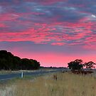 Reflected Sun II by Mark Cooper
