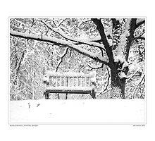 Nichols Arboretum #3 by Phil Perkins