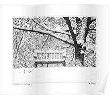 Nichols Arboretum #3 Poster