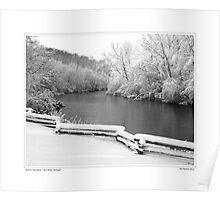 Nichols Arboretum #5 Poster
