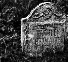 Patrick Bernard Died Here by Scott Mitchell