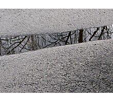14/7 slice of life Photographic Print