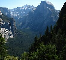 Half Dome from Four Mile Trail, Yosemite National Park, CA 2012 by J.D. Grubb