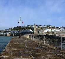 Porthleven From The Breakwater by Terri Waters