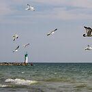Beachfront  by greyrose