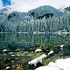 Early Snow at Nymph Lake by Eric Glaser