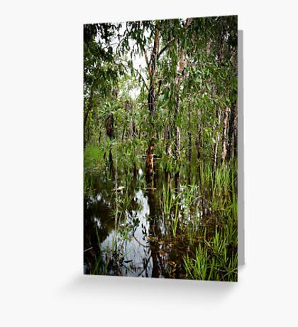 Paperbark Swamp Greeting Card