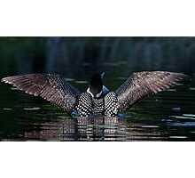 I once caught a fish....Common Loon Photographic Print