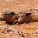 Mud Bath by KelseyGallery