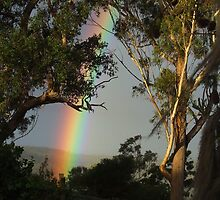 Late Rainbow... by debsphotos
